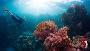 Laut Kepulauan Togean
